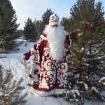 Дед Мороз в зимнем Лесу Белогорск фото 2014