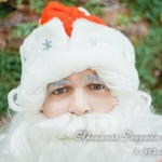 Пригласить Деда Мороза Псков